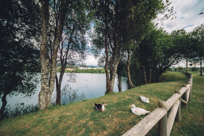 Laguna Mina Mercedes