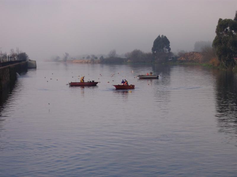 Puerto fluvial de Pontecesures